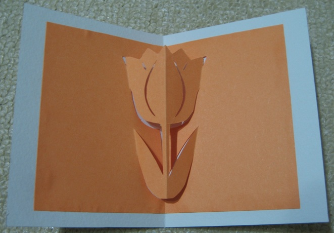 card_tulip_20111119.jpg